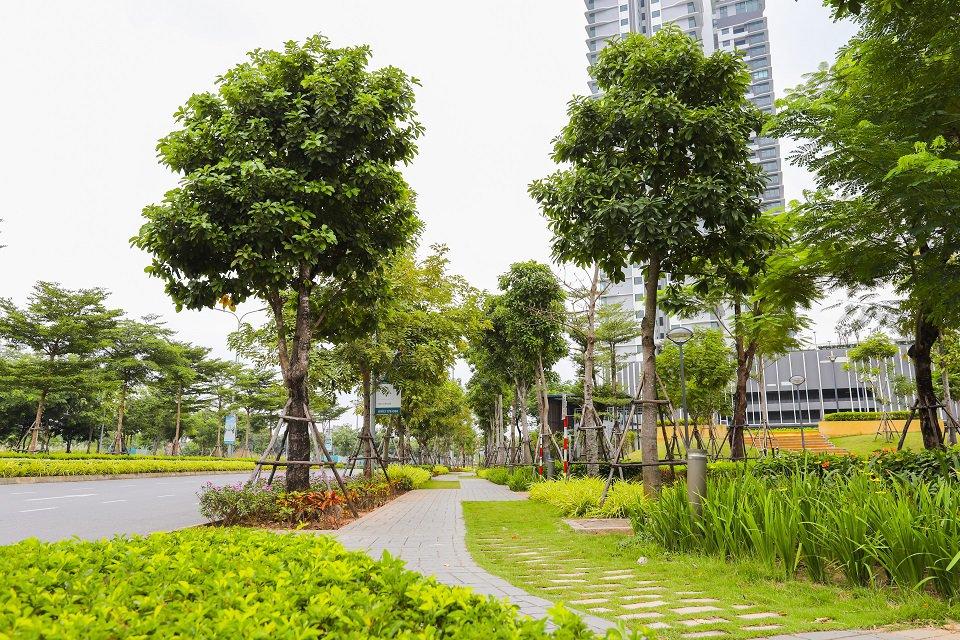 Đường dạo bộ cho cư dân The Zen Residence