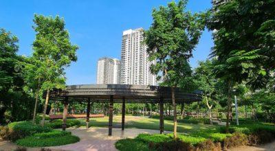 Không gian xanh chung cư Gamuda